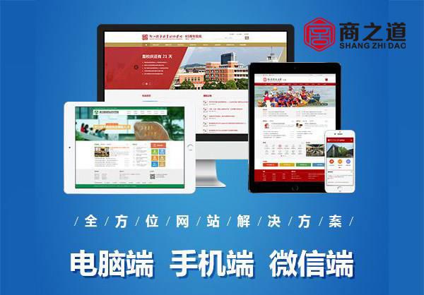 学校网站设计开发方案和报价